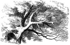 Cheshire Cate